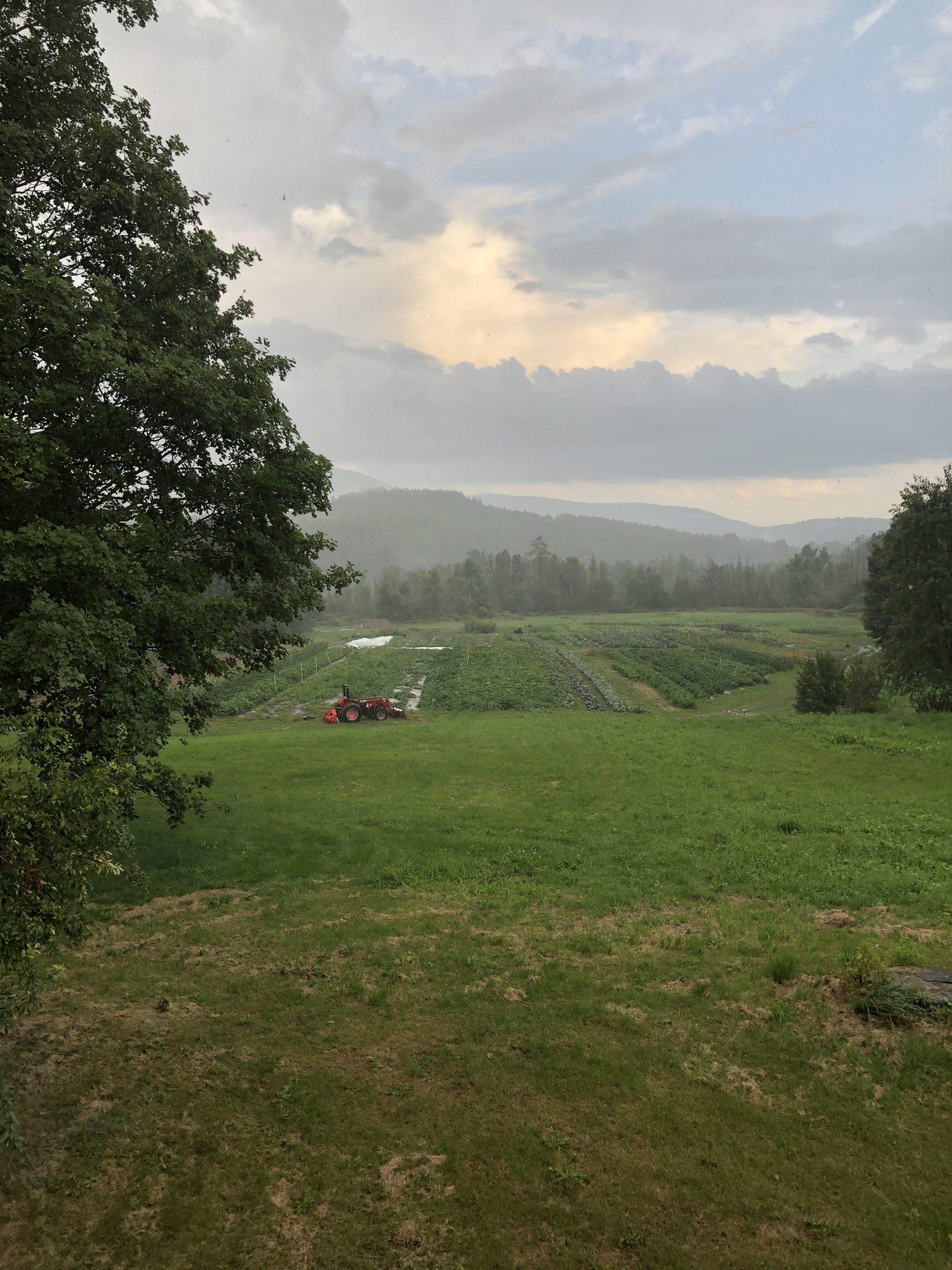 Levity Mountain Lower Field