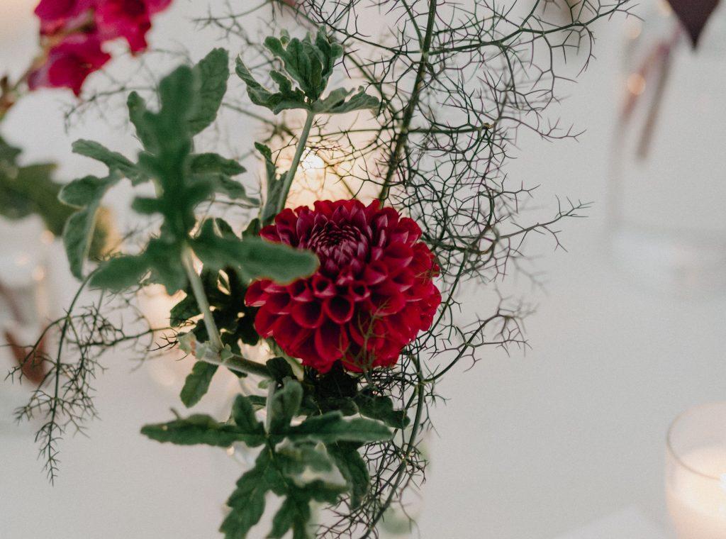 margo_loz_wedding_-813